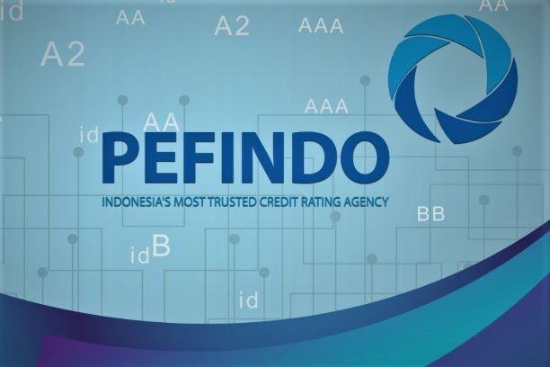 PEFINDO-2.jpg