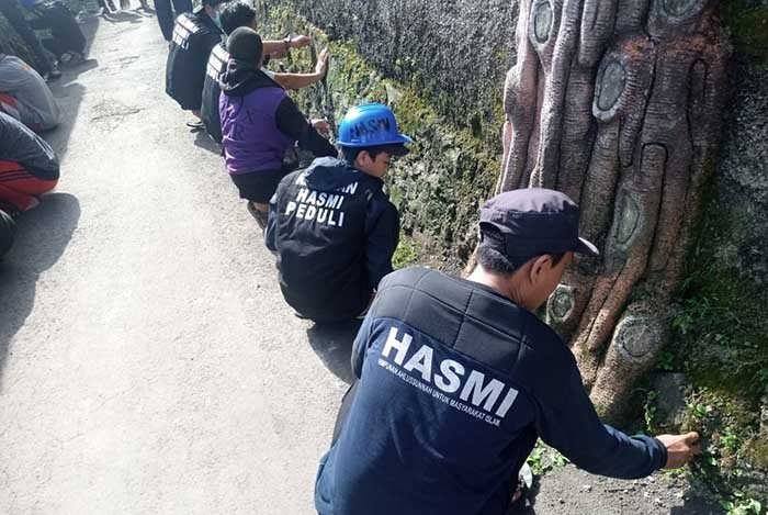 hasmi-3.jpg